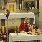 La domenica delle Palme a Borgnano