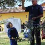 Festa delle Palme a Brazzano